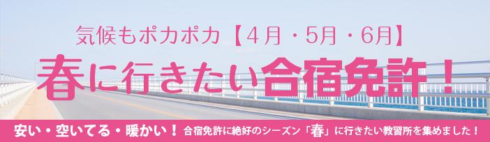 【安い・空いてる・暖かい!】4月・5月・6月の空いている時期に行きたい合宿免許教習所特集!
